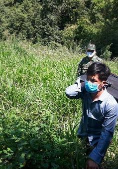 Bắt giữ đối tượng mang vũ khí tự chế, vượt biên trái phép tại Nghệ An