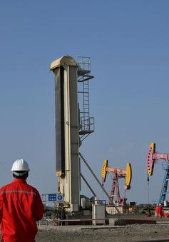 """Nhập khẩu lượng dầu kỷ lục, Trung Quốc vẫn """"thất hứa"""" với Mỹ"""