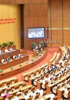 Quốc hội thảo luận tình hình kinh tế - xã hội