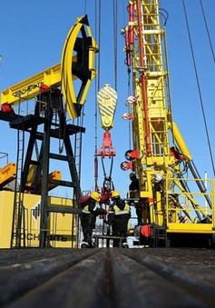 Giá dầu châu Á giảm trước những lo ngại về triển vọng nhu cầu