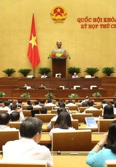 Đề xuất phạt lao động công ích để xử lý vi phạm hành chính
