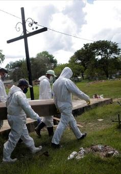 Brazil có thể vượt Mỹ cả về số ca nhiễm COVID-19 mới và ca tử vong