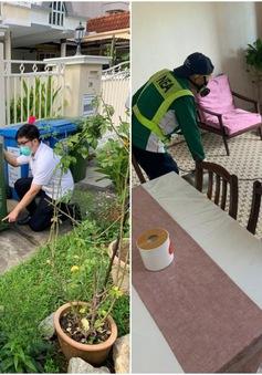 Singapore tăng hình phạt đối với người gây nên nguy cơ sốt xuất huyết
