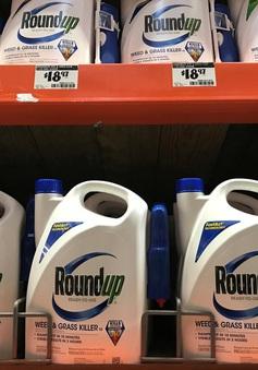 Tập đoàn hóa chất Bayer giành chiến thắng pháp lý ở Mỹ trong vụ tranh cãi thuốc diệt cỏ gây ung thư