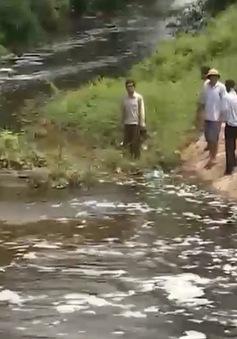 Hàng nghìn mẫu ruộng bỏ hoang vì nguồn nước bị ô nhiễm