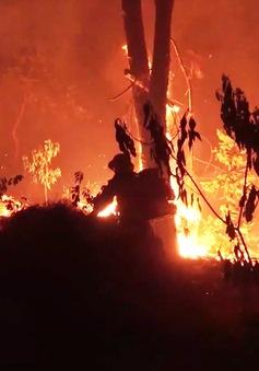 Cháy rừng diễn biến phức tạp ở Diễn Châu, Nghệ An
