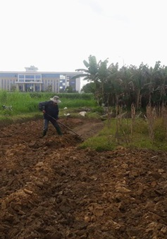 Quảng Ngãi: Kỷ luật nhiều cán bộ lãnh đạo sai phạm về đất đai