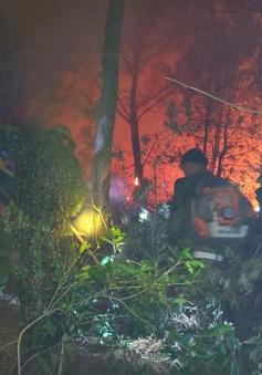 Nguy cơ cháy rừng tại Nghệ An, Hà Tĩnh vẫn ở mức báo động cực kỳ nguy hiểm