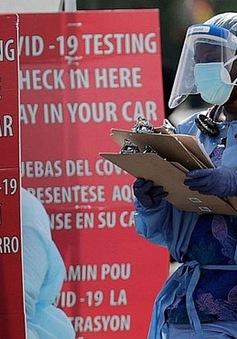 Hơn 12,3 triệu người mắc COVID-19 toàn cầu, Tổng thống Bolivia dương tính với SARS-CoV-2