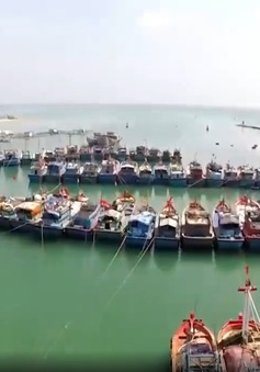 Gỡ nút thắt đầu tư công nghệ khai thác thủy sản xa bờ