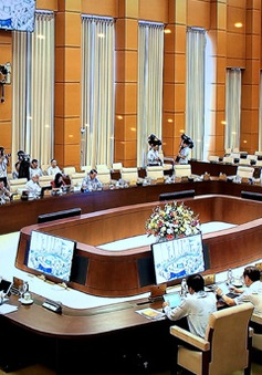 Họp trực tuyến kết hợp tập trung tại kỳ họp Quốc hội thứ 10