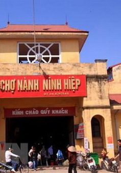 """16 năm tù cho """"nữ quái"""" lừa cô ruột bán ki-ốt chợ Ninh Hiệp, Hà Nội"""