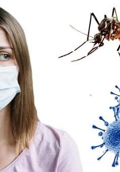 Nghiên cứu phát hiện muỗi không thể lây truyền virus SARS-CoV-2 sang người