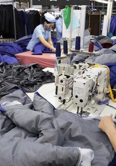 Sau 25 năm, thương mại Việt Nam - Hoa Kỳ tăng gần 170 lần