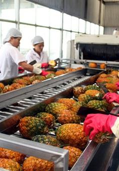Xuất khẩu rau quả sang Thái Lan tăng ấn tượng