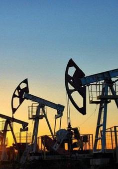 Bất chấp nỗi lo về COVID-19, dầu thô vẫn tăng giá mạnh