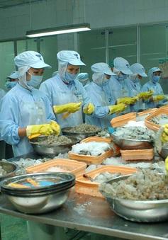 Doanh nghiệp ĐBSCL bị giảm hơn 80% đơn hàng do dịch COVID-19