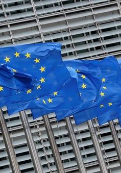 Đối mặt sức ép thuế quan từ Mỹ, EU tăng khả năng đáp trả thương mại