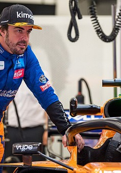 Fernando Alonso tuyên bố sẽ trở lại F1 từ mùa sau