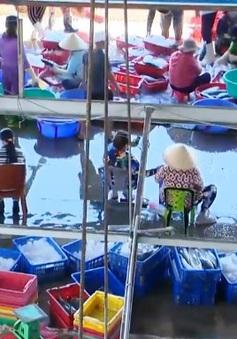 Tích cực phòng ngừa lây nhiễm COVID-19 ở cảng cá