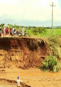 Mưa lũ diện rộng gây thiệt hại lớn cho nhiều địa phương