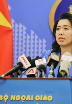 Việt Nam sẵn sàng phối hợp với nước sở tại bảo hộ công dân bị tạm giữ tại Malaysia và Indonesia