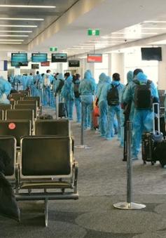 Đưa hơn 340 công dân Việt Nam từ Australia về nước
