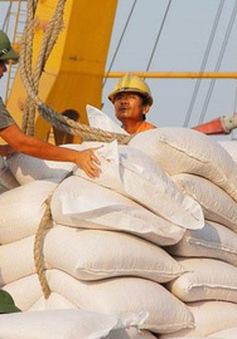 Giá gạo xuất khẩu của Việt Nam tăng thêm 5 USD/tấn