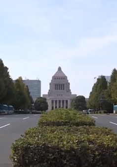 Đảng cầm quyền Nhật Bản cân nhắc chọn lãnh đạo kế nhiệm Thủ tướng