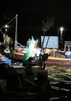 Bắt 5 tàu cá khai thác thủy hải sản trái phép