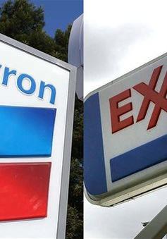 """Các """"ông lớn"""" dầu khí toàn cầu đua nhau báo lỗ lớn"""
