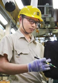 Bắt đầu cấp visa cho lao động Việt Nam sang làm việc tại Nhật Bản