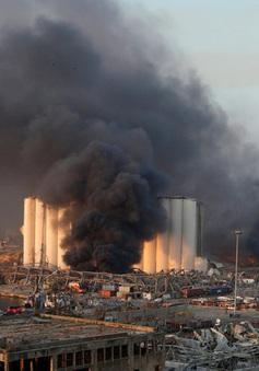 Các Bộ trưởng Ngoại giao ASEAN ra tuyên bố về vụ nổ Beirut