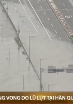 Gia tăng số người thiệt mạng vì lũ lụt tại Hàn Quốc