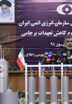 Nhiều nước châu Âu ủng hộ nới lỏng trừng phạt Iran