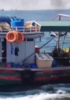 Gia tăng tình trạng khai thác trái phép trên vùng biển Bắc Trung Bộ