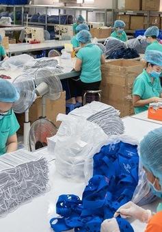 9 tháng xuất siêu kỷ lục gần 17 tỷ USD - Điểm sáng kinh tế Việt Nam