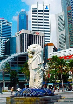 Singapore xử phạt nhà cung cấp Internet gây gián đoạn dịch vụ trong mùa dịch