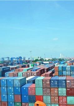 """Giải tỏa """"cơn khát"""" vỏ container: Hơn 3.000 container nằm """"đắp chiếu"""" sẽ được thanh lý?"""