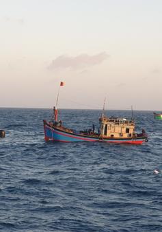 Tiếp nhận 1 thi thể ngư dân trên tàu cá bị nạn ở biển Côn Đảo