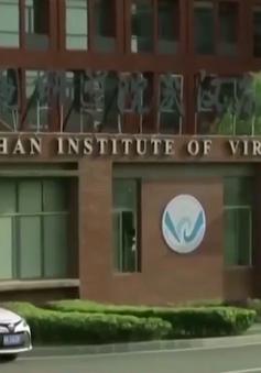 Trung Quốc phản bác chỉ trích về điều tra nguồn gốc SARS-CoV-2