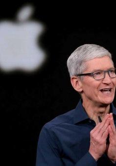 CEO Tim Cook: 2020 là năm sáng tạo nhất của Apple