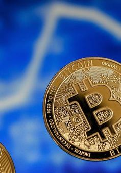 """""""Tàu lượn"""" Bitcoin cắm đầu lao dốc"""
