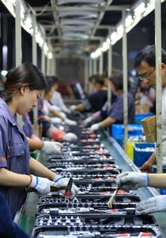 Kinh tế toàn cầu sẵn sàng hướng đến phục hồi vững chắc
