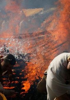 """Kỳ lạ, lễ hội """"đi chân trần qua than cháy"""" để cầu bình an ở Nhật Bản"""