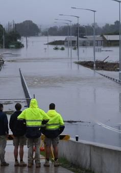 Khoảng 20.000 người vẫn bị mắc kẹt do lũ lụt ở miền Đông Australia