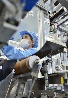 FDI vào Việt Nam tăng mạnh