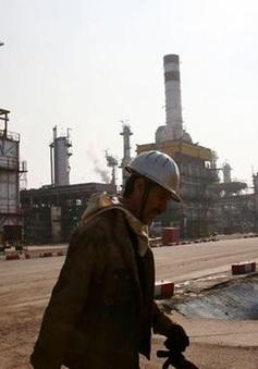 Giá dầu bật tăng gần 1%