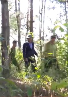 Kon Tum: Chủ động phòng cháy chữa cháy rừng mùa khô 2021
