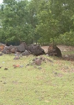 Hà Tĩnh kiến nghị đóng cửa dự án mỏ sắt Thạch Khê